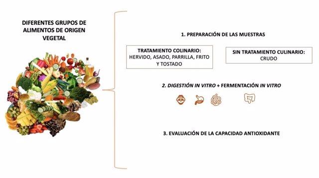 Nota: Investigación Capacidad Antioxidante De Los Alimentos