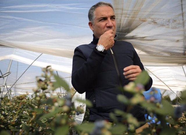 El consejero de Presidencia, Elías Bendodo, en una finca fresera de Lucena del Puerto (Huelva).
