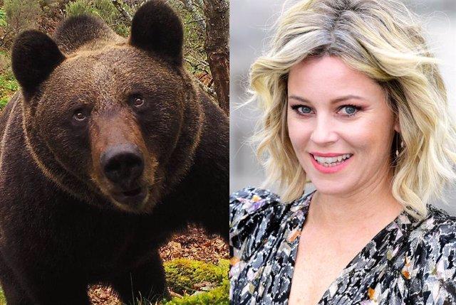 Elizabeth Banks dirigirá 'Cocaine Bear': La historia real de un oso que murió por sobredosis de cocaína