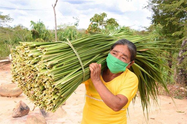 Fundación Microfinanzas BBVA (FMBBVA) ayuda a cientos de miles de mujeres para que salgan adelante con pequeños negocios en América Latina