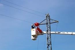 Endesa invertirá 4,6 millones en adaptar apoyos de líneas eléctricas y proteger la avifauna