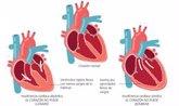 Foto: Alimentación sana, ejercicio físico, control de peso y evitar el tabaco y alcohol, claves para tener un corazón fuerte