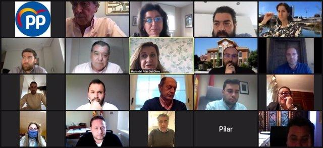 Reunión telemática entre el Grupo Municipal Popular en el Ayuntamiento de Valladolid con alcaldes y concejales de los municipios del alfoz.