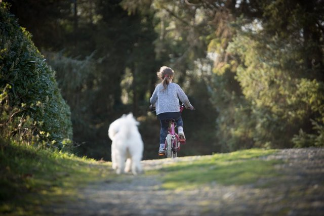 Imagen de una niña en bicicleta acompañada de su perro facilitada por la Universitat Rovira i Virgili de Tarragona.