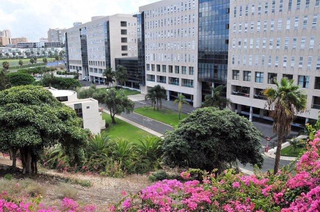 Archivo - Hospital de Gran Canaria Dr. Negrín