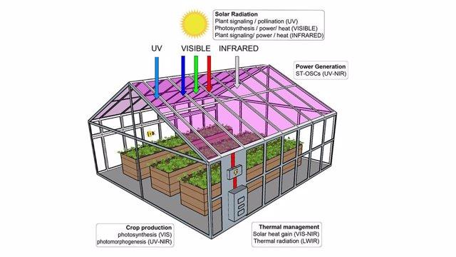 Invernadero fabircado con paneles de células solares