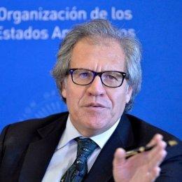 Archivo -  El secretario general de la Organización de Estados Americanos (OEA), Luis Almagro