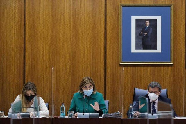 La consejera de Empleo, Formación y Trabajo Autónomo, Rocío Blanco, en comisión parlamentaria.