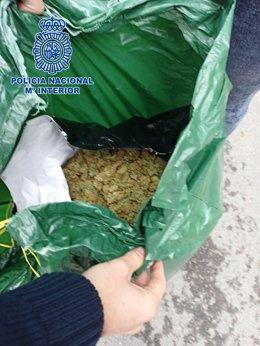 A presó nou persones per presumpte tràfic de marihuana a Lloret (Girona)