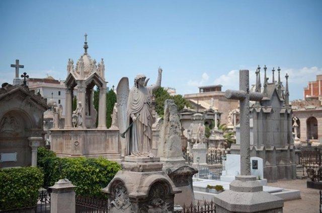 Barcelona estudia crear un cementiri per a animals de companyia a Collserola