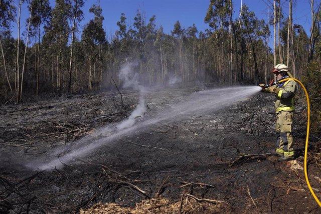 Un bombero apaga el incendio forestal en la parroquia de Figueriras en Santiago de Compostela, A Coruña, Galicia (España), a 20 de marzo de 2021.