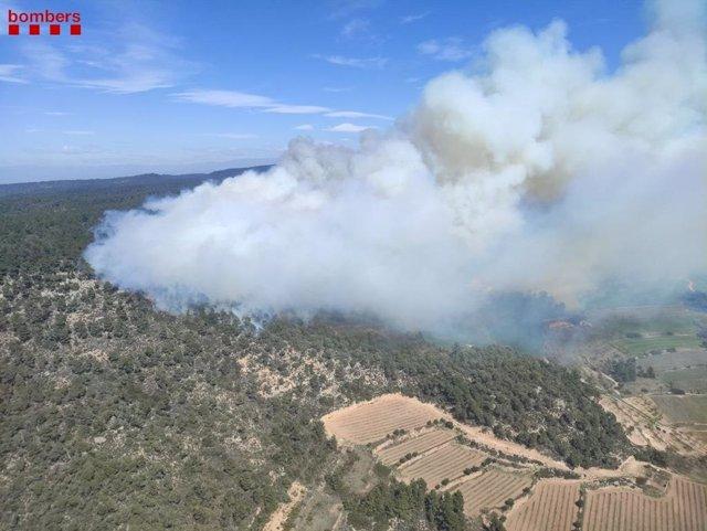 Foc en la Serra de Senan, a la comarca de Conca de Barberà a Tarragona.
