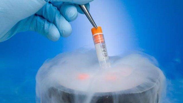 Congelar embriones