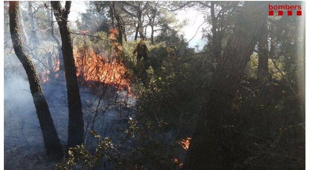 Un incendi forestal a la serra de Senan de Tarragona.
