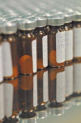 Archivo - Avances de la Vacuna española contra la Tuberculosis