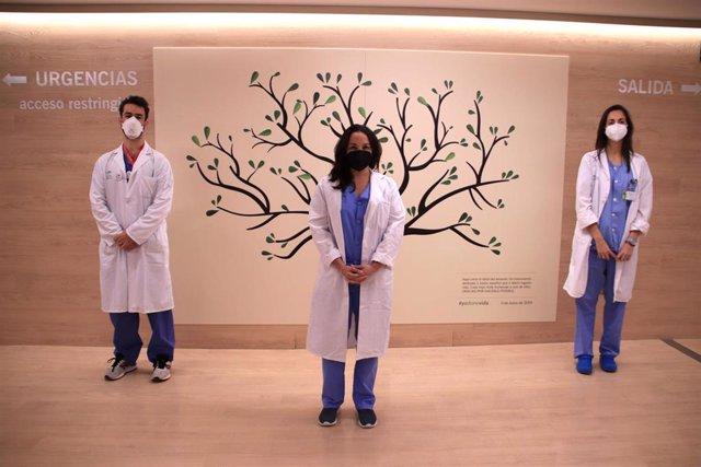 Componentes de la Unidad de Trasplantes de Hospital Virgen Macarena