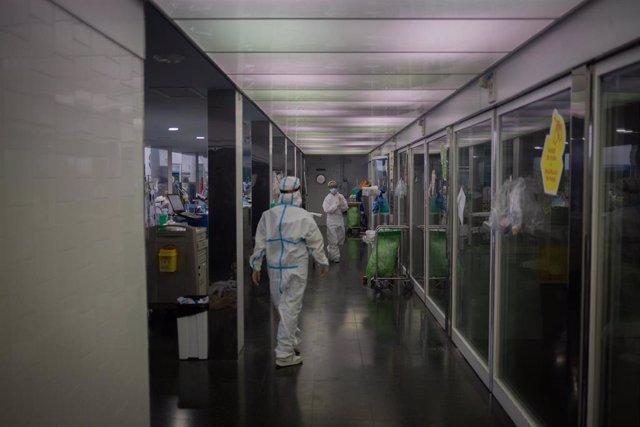 Archivo - Varios sanitarios protegidos en la Unidad de Cuidados Intensivos –UCI- del Hospital del Mar, en Barcelona, Catalunya (España), a 19 de noviembre de 2020