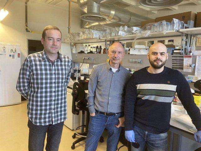Investigadores descubren una nueva llave que podría cerrar el paso a la metástasis