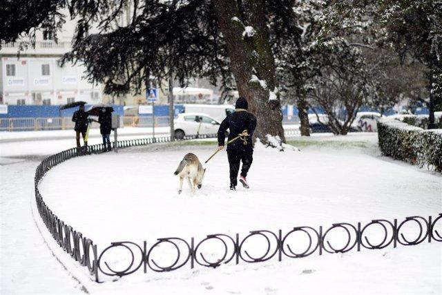 Archivo - Un hombre pasea a su perro en Madrid, durante la nevada.