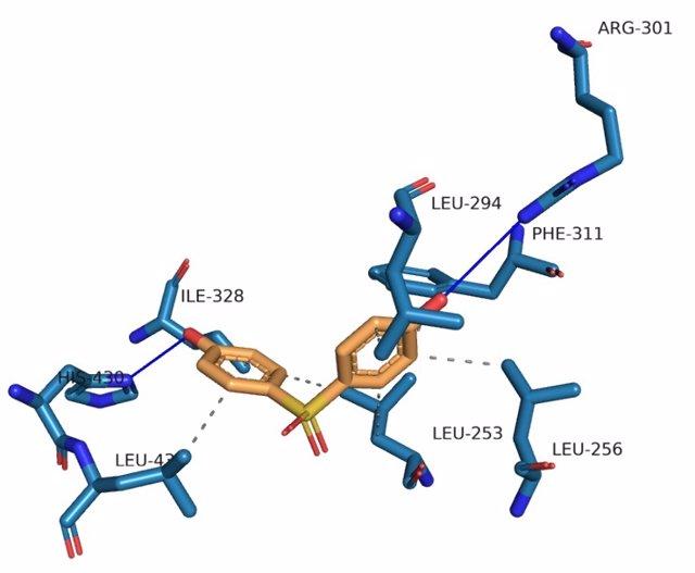 Un estudio evidencia que los actuales sustitutos del bisfenol-A también provocan alteraciones metabólicas