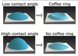 Un nuevo estudio ha descubierto el misterio detrás de los 'anillos de café' y cómo podría hacer avanzar la investigación en el diagnóstico de sangre.