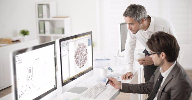 Bamberg - IA Patología Digital