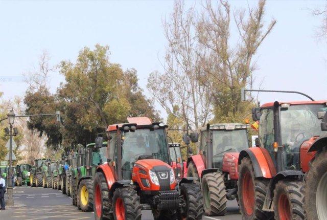 Tractorada de arroceros en Valencia