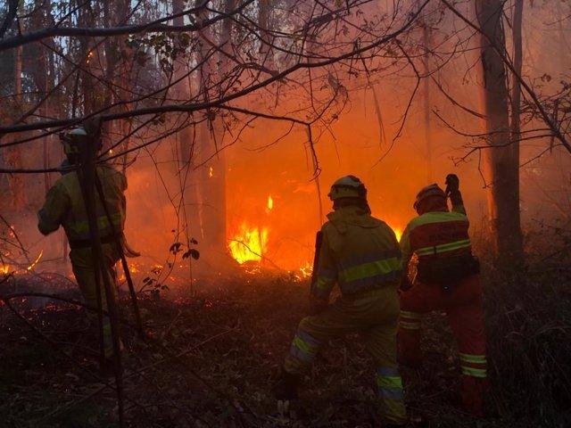 Archivo - Incendio forestal en Cantabria