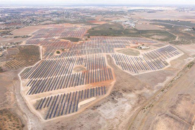 Archivo - Planta fotovoltaica construida por OPDEnergy en Alcalá de Guadaíra (Sevilla).