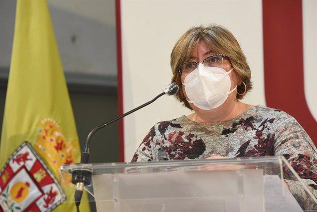 Archivo - La diputada provincial de Empleo y Desarrollo Sostenible, Ana Muñoz