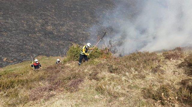 Bomberos intervienen para extinguir un incendio de vegetación
