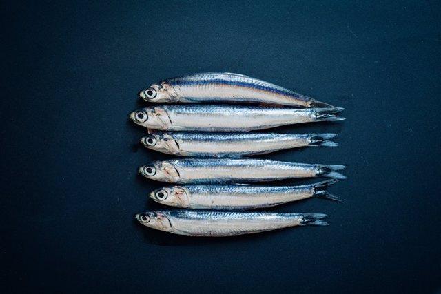 Archivo - Boquerones. Pescado azul.