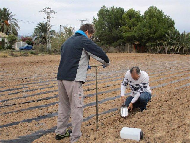 Toma de muestras del proyecto de investigación conjunto entre Esamur y el Centro Tecnológico Nacional de la Conserva y Alimentación