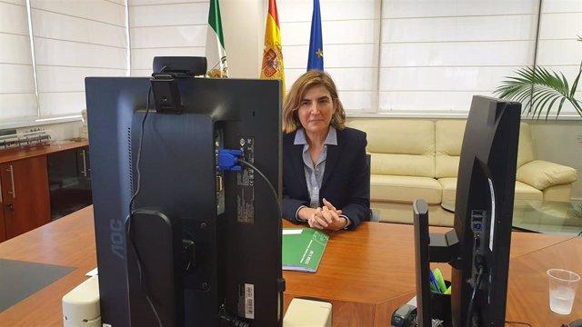 La consejera de Empleo, Formación y Trabajo Autónomo de la Junta de Andalucía, Rocío Blanco, durante la presentación de la guía.