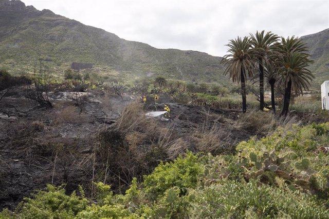 La brifor continúa realizando labores de refresco en la zona del incendio