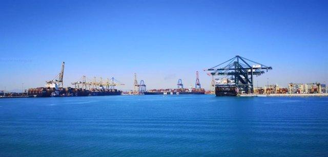 Llegada del primer buque procedente de Suez al Puerto de Valencia, el MSC Le Havre