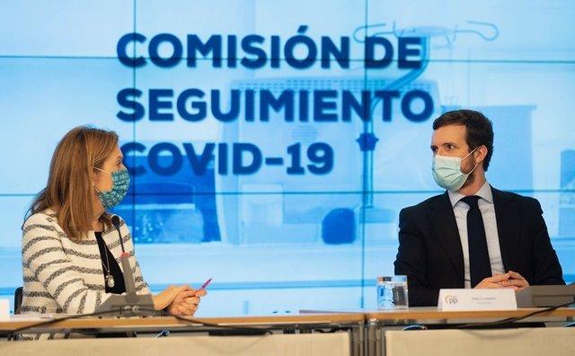 Archivo - El líder del PP, Pablo Casado, preside la reunión de la Comisión de Seguimiento del Covid-19 del PP. Le acompañan, entre otros la vicesecretaria del PP, Ana Pastor. En Madrid, a 27 de enero  de 2020.