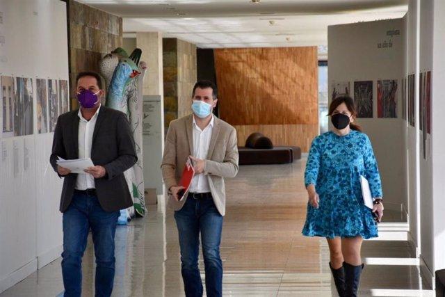 Tudanca en los pasillos de las Cortes antes de presentar la iniciativa legislativa