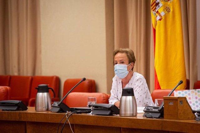 La Fiscal de Sala Delegada de Violencia contra la Mujer, Pilar Martín, en el Congreso