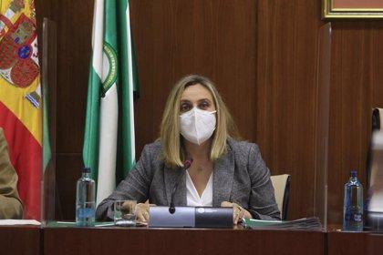Puertos.- Carazo aboga por aunar la actividad logística con la portuaria y ensalza el proyecto de la ZAL