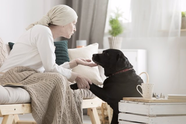 Archivo - Tumor patient caressing her dog