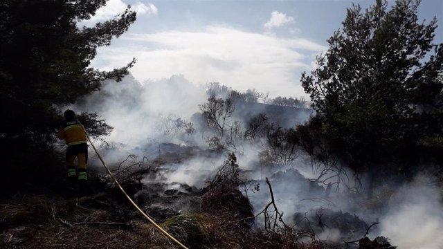 Un efectivo apaga un incendio en Sant Llorenç des Cardassar.