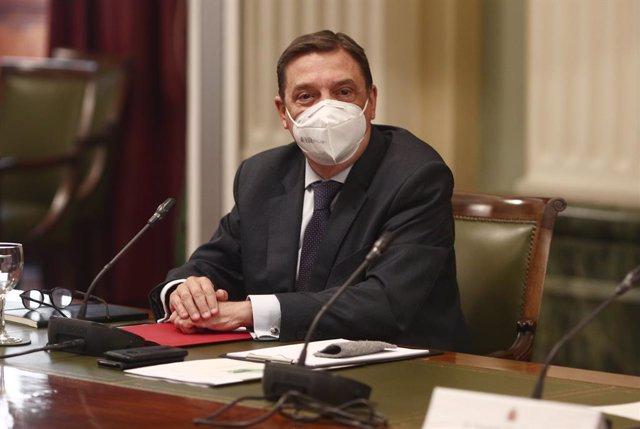 El ministro de Agricultura, Pesca y Alimentación, Luis Planas, en una foto de archivo.