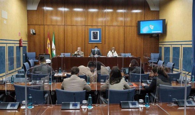 Sesión de la comisión de investigación de la Faffe (Foto de archivo).