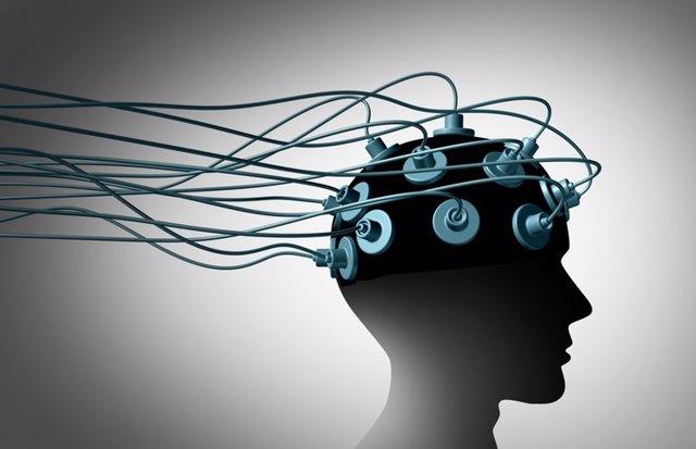 Archivo - Brain Linking