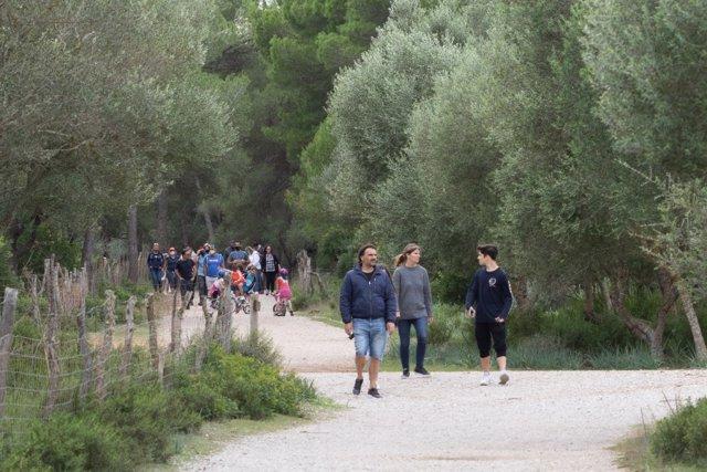 Archivo - Gente caminando por el campo en Mallorca.
