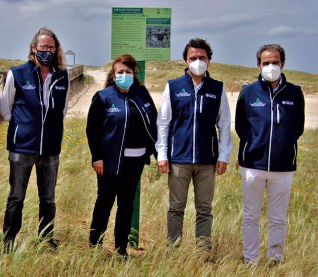 La Junta coordina la protección de la nidificación del Chorlitejo Patinegro con la Asociación de Voluntarios de Trafalgar
