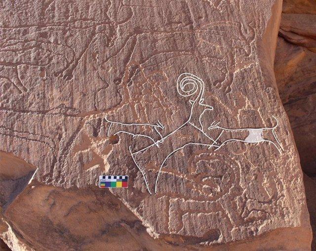 Un panel de arte rupestre de AlUla muestra a dos perros cazando un íbice, rodeados de ganado.