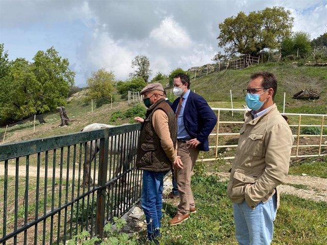 El delegado de Agricultura, Ganadería y Pesca de la Junta de Andalucía en Córdoba, Juan Ramón Pérez (al fondo), visita una explotación equinad.