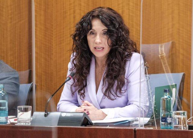 La consejera de Igualdad, Políticas Sociales y Conciliación, Rocío Ruiz, en Comisión de Discapacidad del Parlamento andaluz.